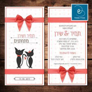 הזמנה לחתונה מאויירות 5